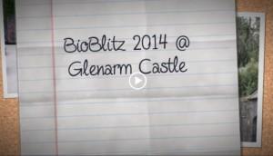 bioblitz 2014