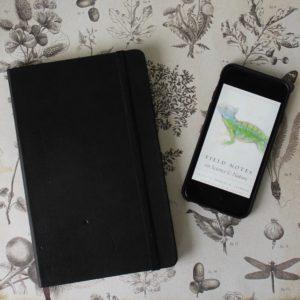 augustofpages - books + stationery   Kieran Higgins